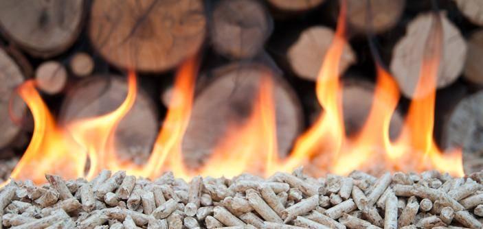 Vente de bois de chauffage Bordeaux en Gironde Aquitaine Bois Energie